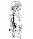 cetme-energopathie-04